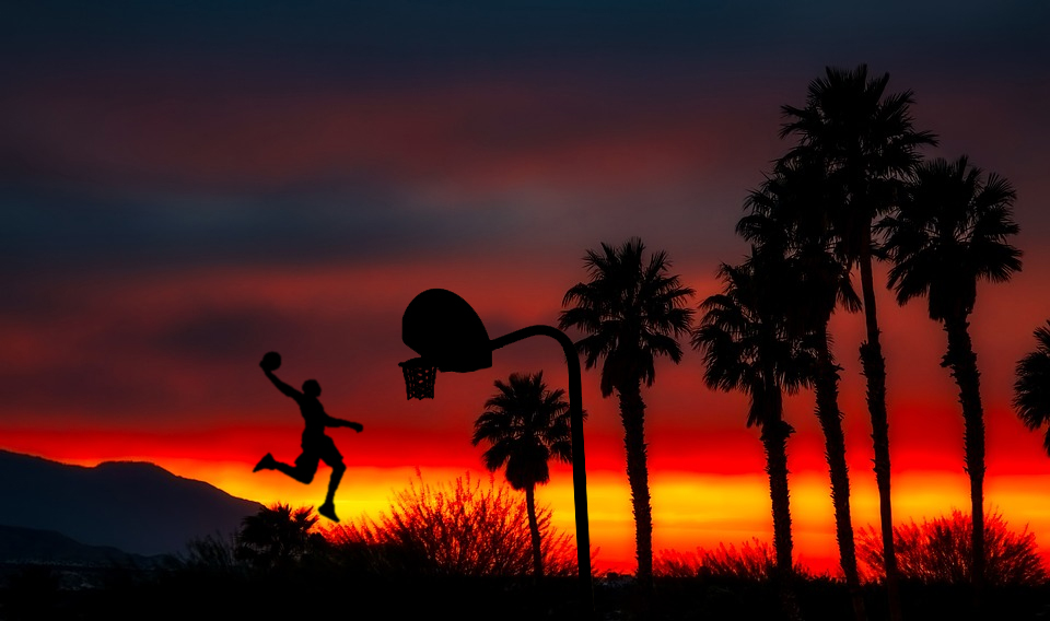 Palm trees at sunset with basketball player silhouetted