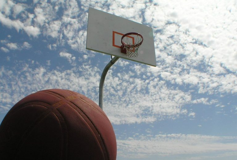 Basketball and net